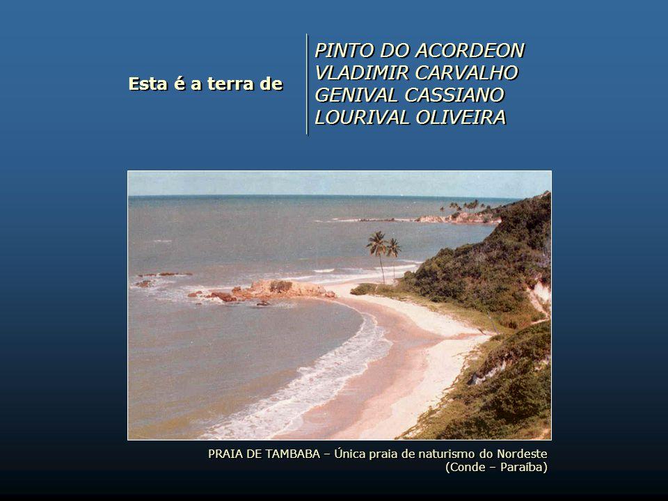 PINTO DO ACORDEON VLADIMIR CARVALHO GENIVAL CASSIANO LOURIVAL OLIVEIRA