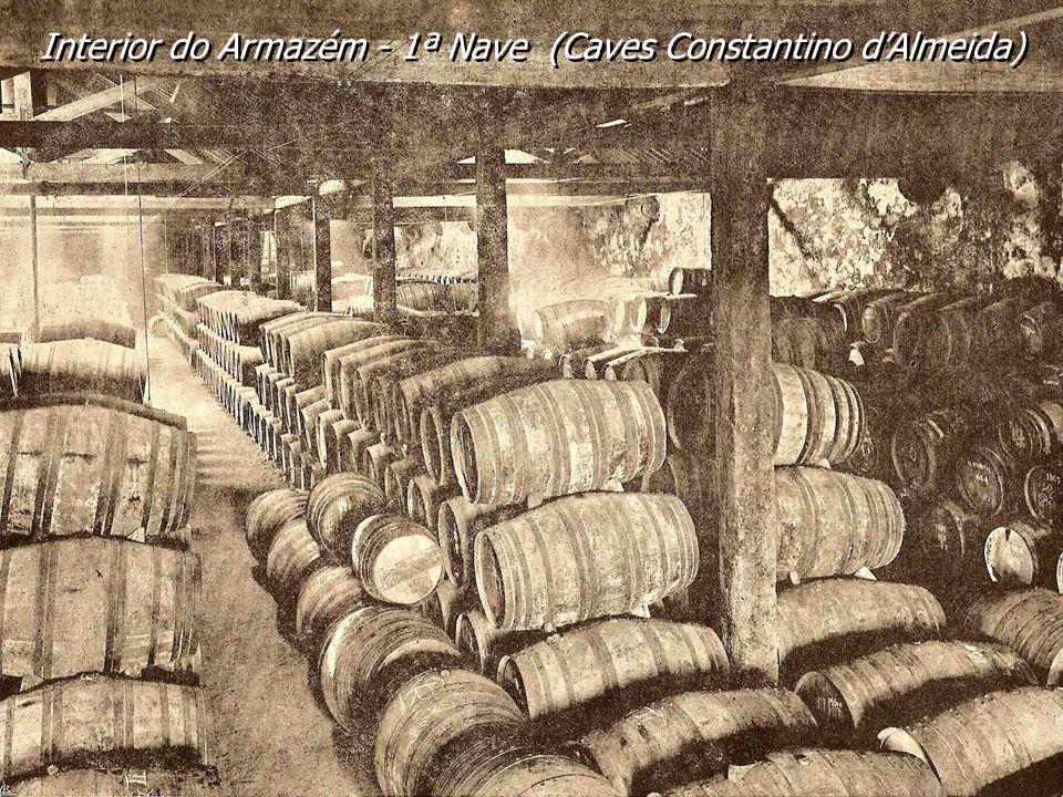 Interior do Armazém - 1ª Nave (Caves Constantino d'Almeida)