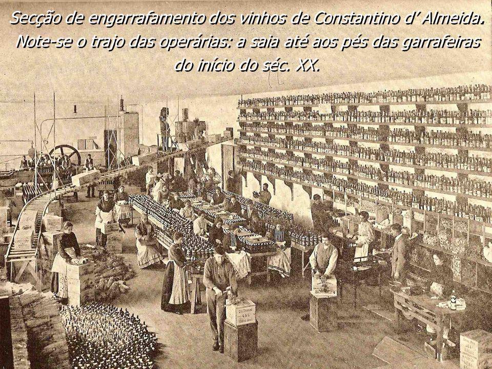 Secção de engarrafamento dos vinhos de Constantino d' Almeida.