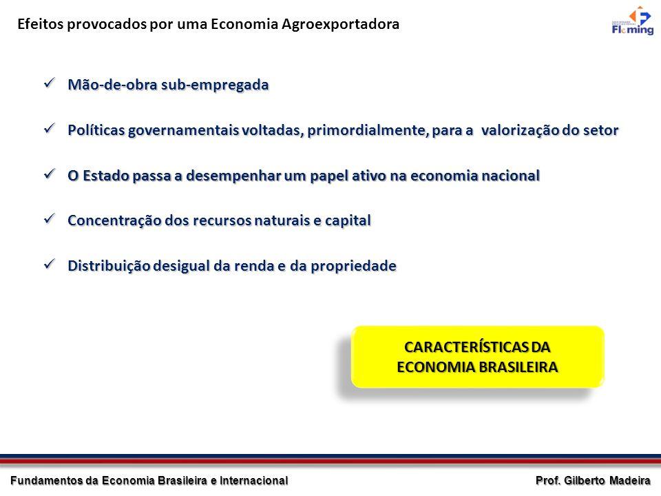 Efeitos provocados por uma Economia Agroexportadora
