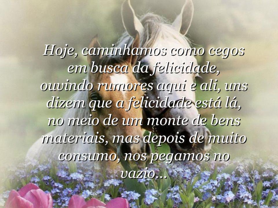 Hoje, caminhamos como cegos em busca da felicidade, ouvindo rumores aqui e ali, uns dizem que a felicidade está lá, no meio de um monte de bens materiais, mas depois de muito consumo, nos pegamos no vazio...