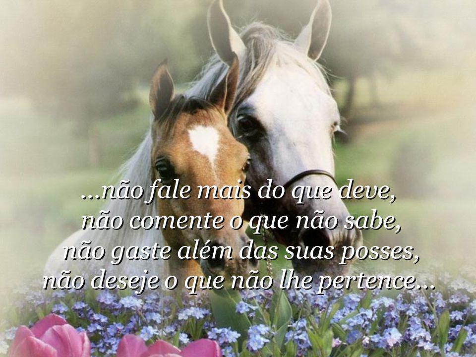 ...não fale mais do que deve, não comente o que não sabe, não gaste além das suas posses, não deseje o que não lhe pertence...