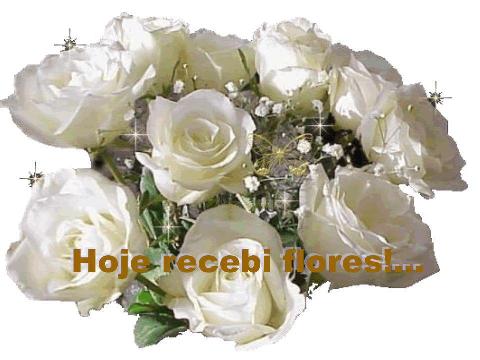 Inicio com som.. Hoje recebi flores!...