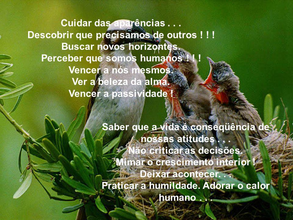 Descobrir que precisamos de outros ! ! ! Buscar novos horizontes.