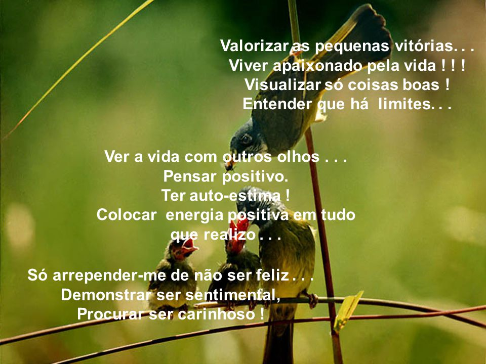 Valorizar as pequenas vitórias. . . Viver apaixonado pela vida ! ! !