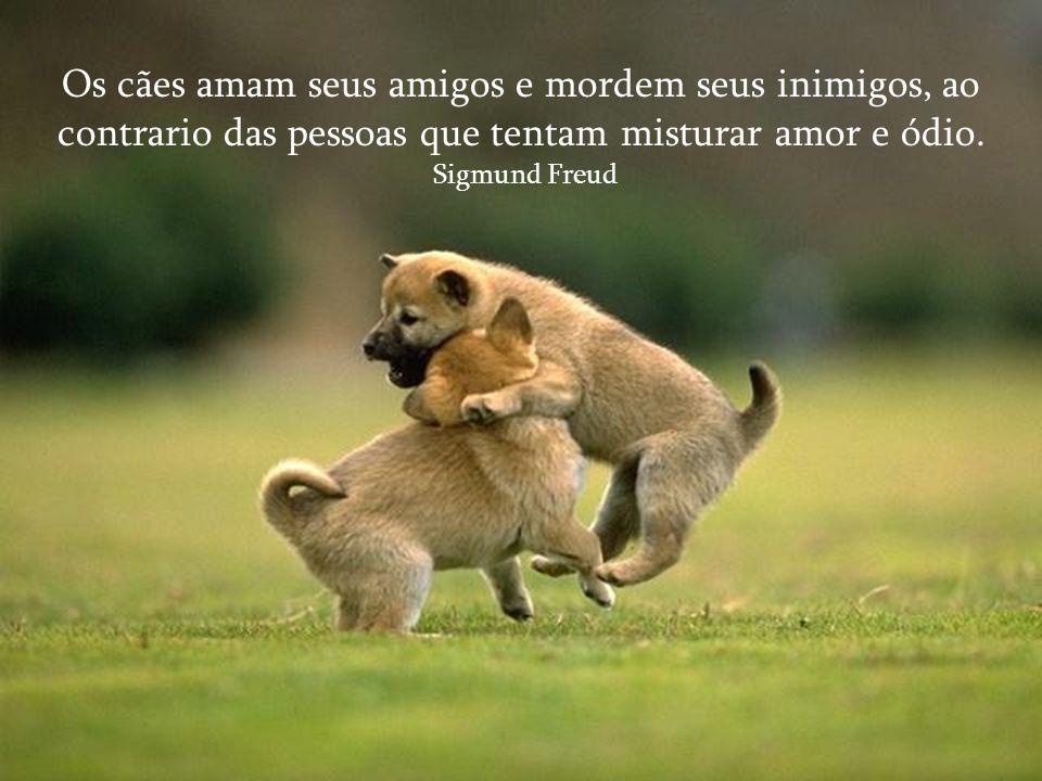 Os cães amam seus amigos e mordem seus inimigos, ao contrario das pessoas que tentam misturar amor e ódio.