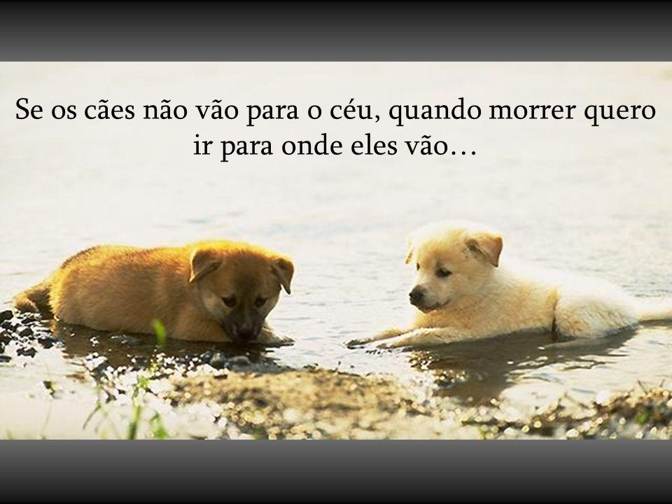 Se os cães não vão para o céu, quando morrer quero ir para onde eles vão…