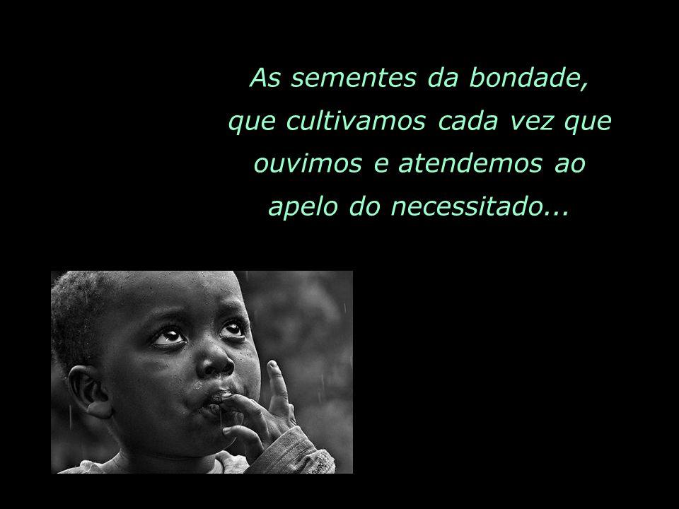 As sementes da bondade, que cultivamos cada vez que ouvimos e atendemos ao apelo do necessitado...