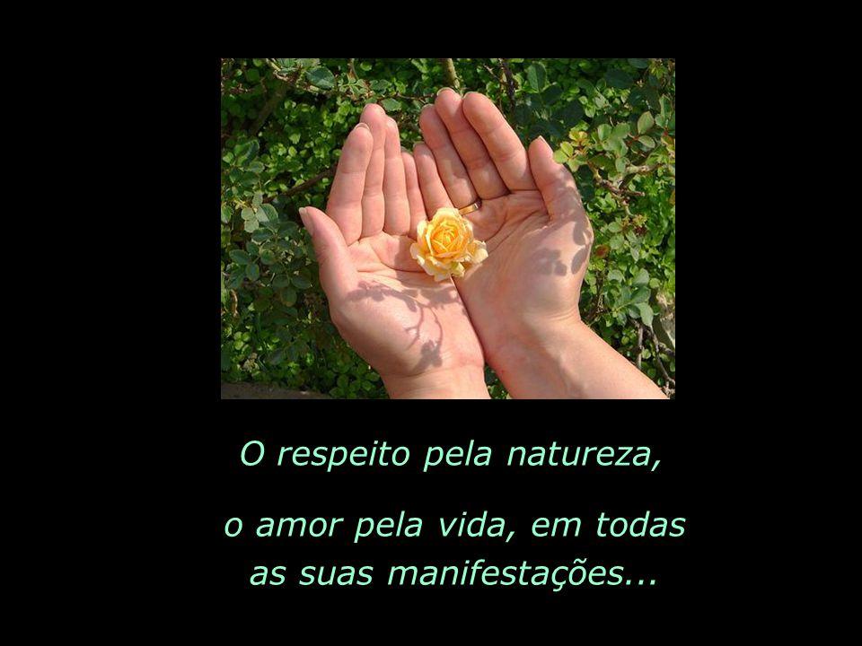 O respeito pela natureza,
