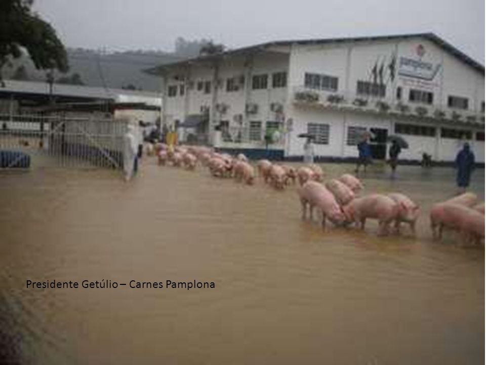 Presidente Getúlio – Carnes Pamplona