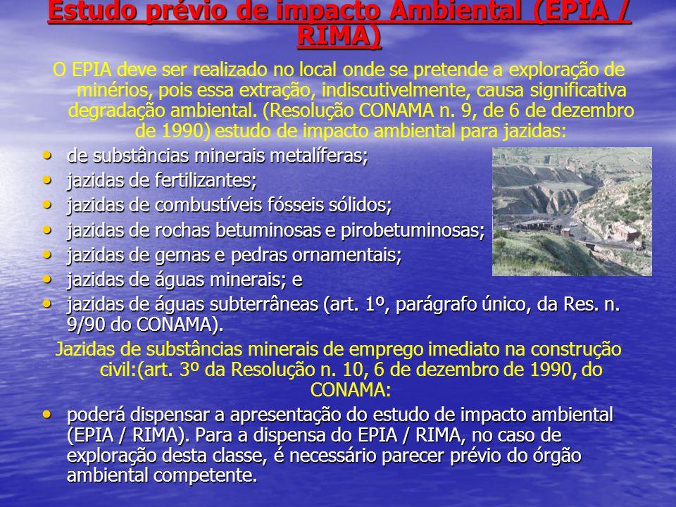 Estudo prévio de impacto Ambiental (EPIA / RIMA)