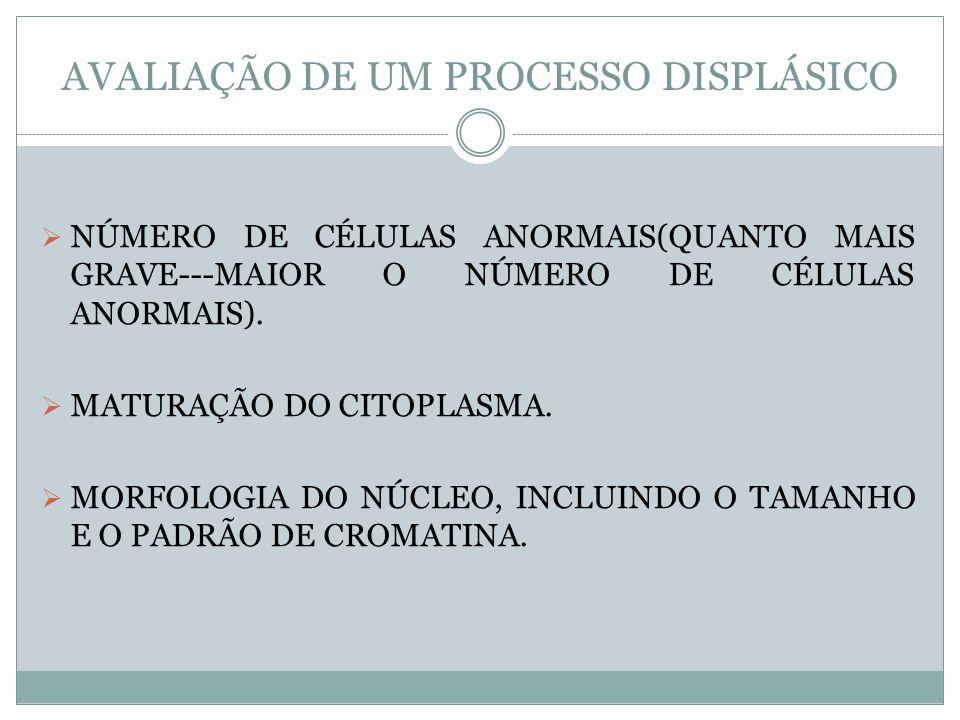 AVALIAÇÃO DE UM PROCESSO DISPLÁSICO