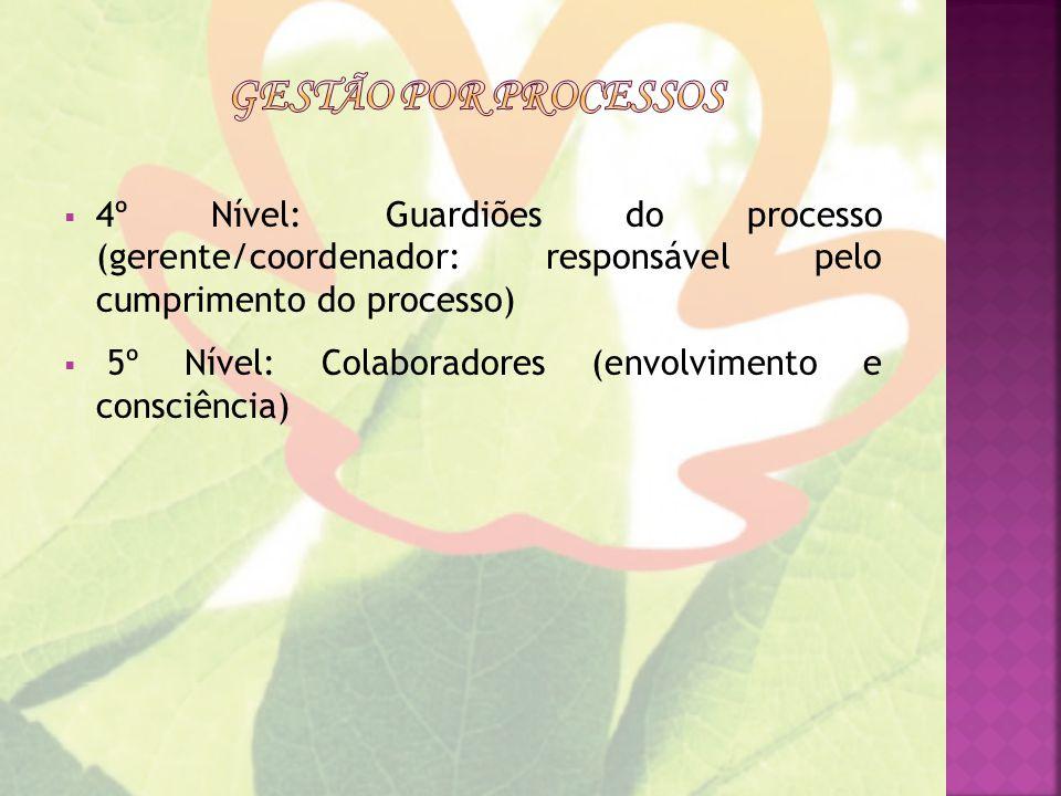 Gestão por processos 4º Nível: Guardiões do processo (gerente/coordenador: responsável pelo cumprimento do processo)
