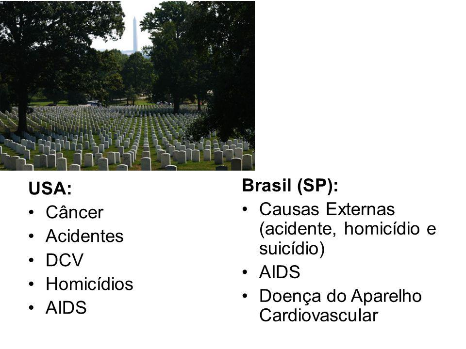 Brasil (SP): Causas Externas (acidente, homicídio e suicídio) AIDS. Doença do Aparelho Cardiovascular.