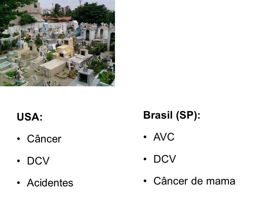 Brasil (SP): AVC DCV Câncer de mama USA: Câncer DCV Acidentes