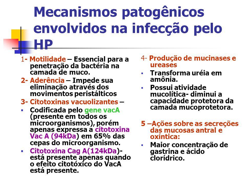 Mecanismos patogênicos envolvidos na infecção pelo HP
