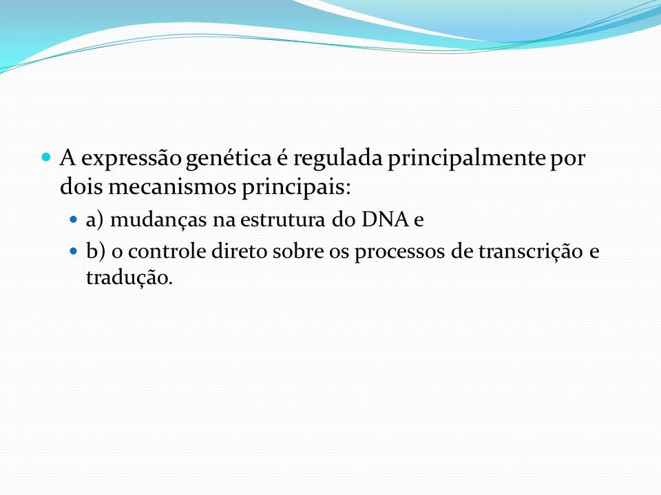 A expressão genética é regulada principalmente por dois mecanismos principais: