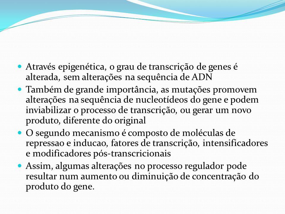 Através epigenética, o grau de transcrição de genes é alterada, sem alterações na sequência de ADN