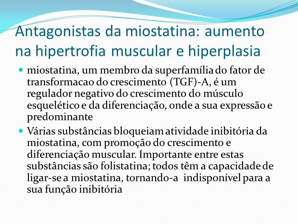 Antagonistas da miostatina: aumento na hipertrofia muscular e hiperplasia