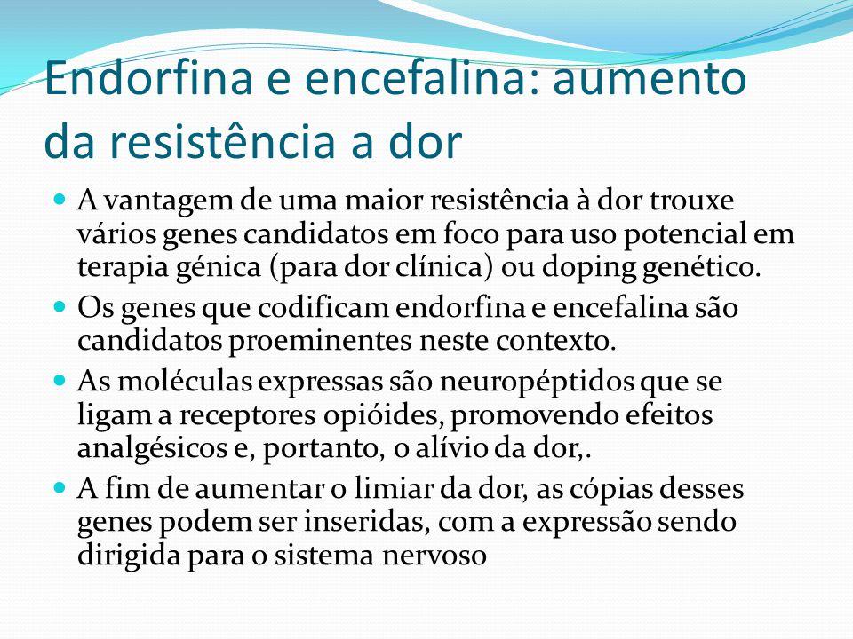 Endorfina e encefalina: aumento da resistência a dor