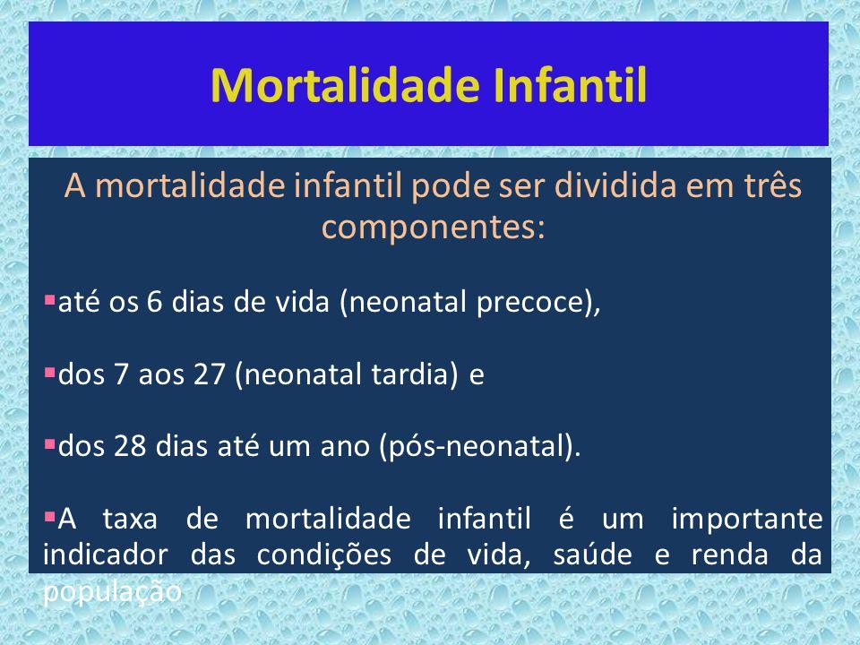A mortalidade infantil pode ser dividida em três componentes: