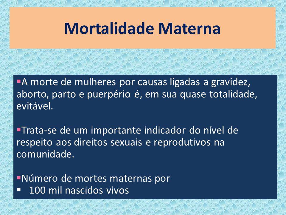 Mortalidade Materna A morte de mulheres por causas ligadas a gravidez, aborto, parto e puerpério é, em sua quase totalidade, evitável.