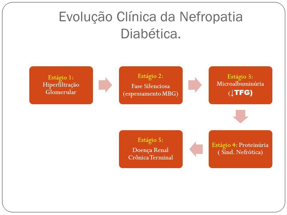 Evolução Clínica da Nefropatia Diabética.