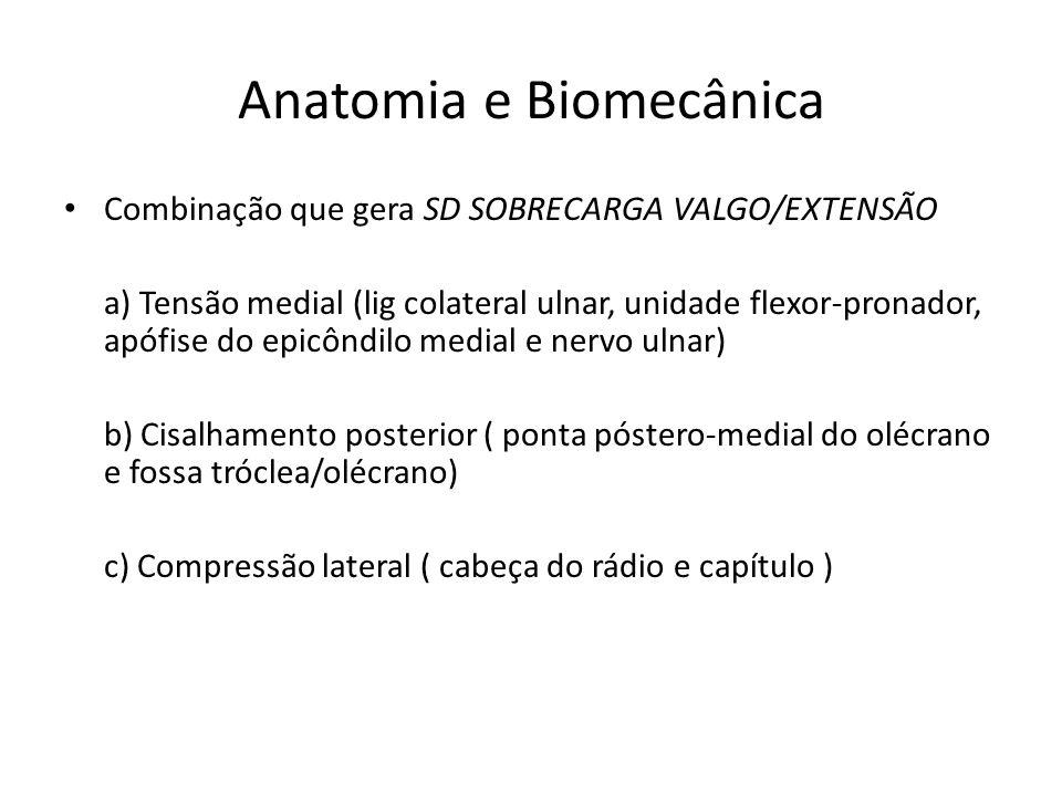 Anatomia e Biomecânica