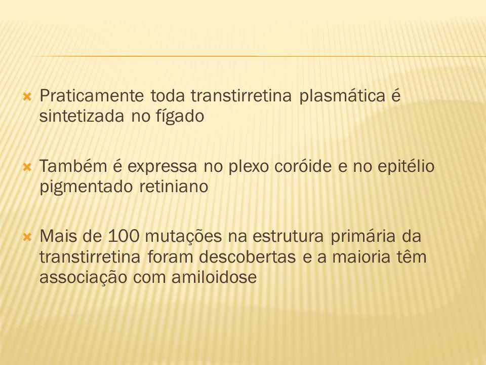 Praticamente toda transtirretina plasmática é sintetizada no fígado