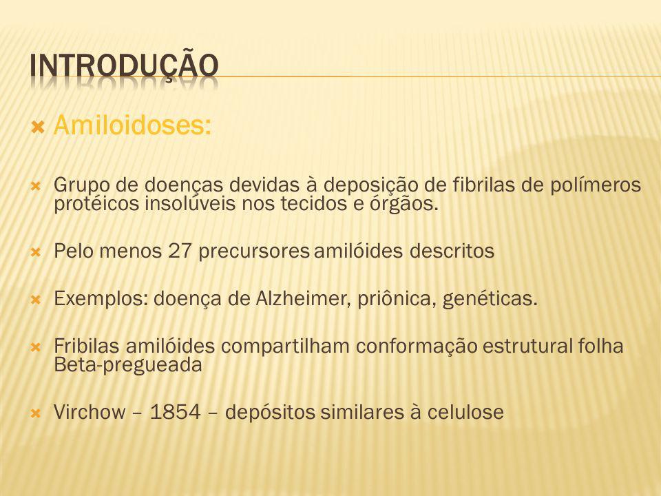 Introdução Amiloidoses: