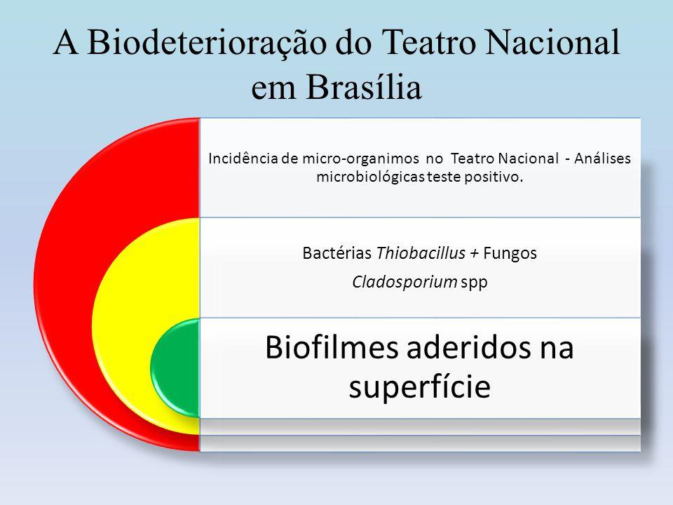 A Biodeterioração do Teatro Nacional em Brasília