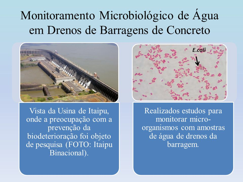 Monitoramento Microbiológico de Água em Drenos de Barragens de Concreto