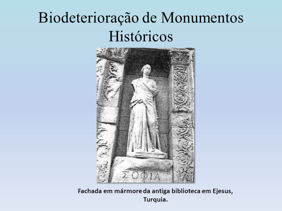 Biodeterioração de Monumentos Históricos