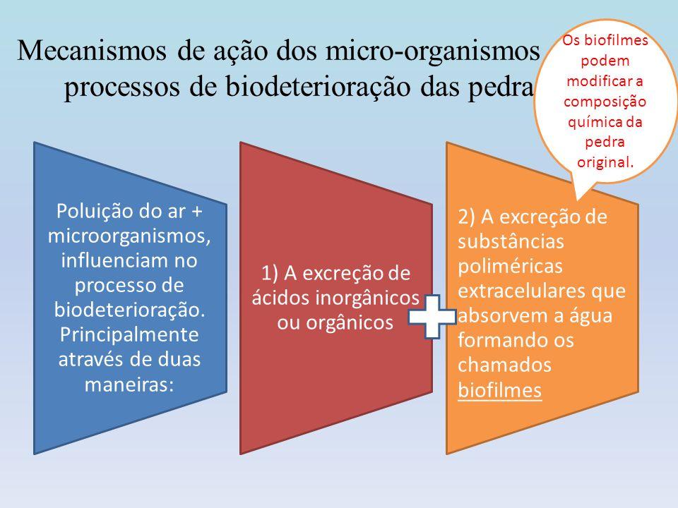 Os biofilmes podem modificar a composição química da pedra original.