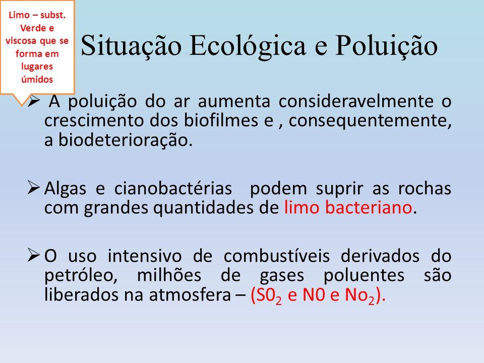 Situação Ecológica e Poluição