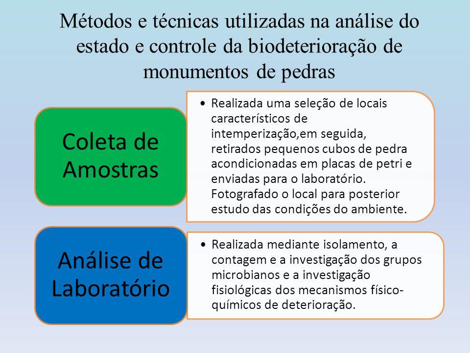 Análise de Laboratório