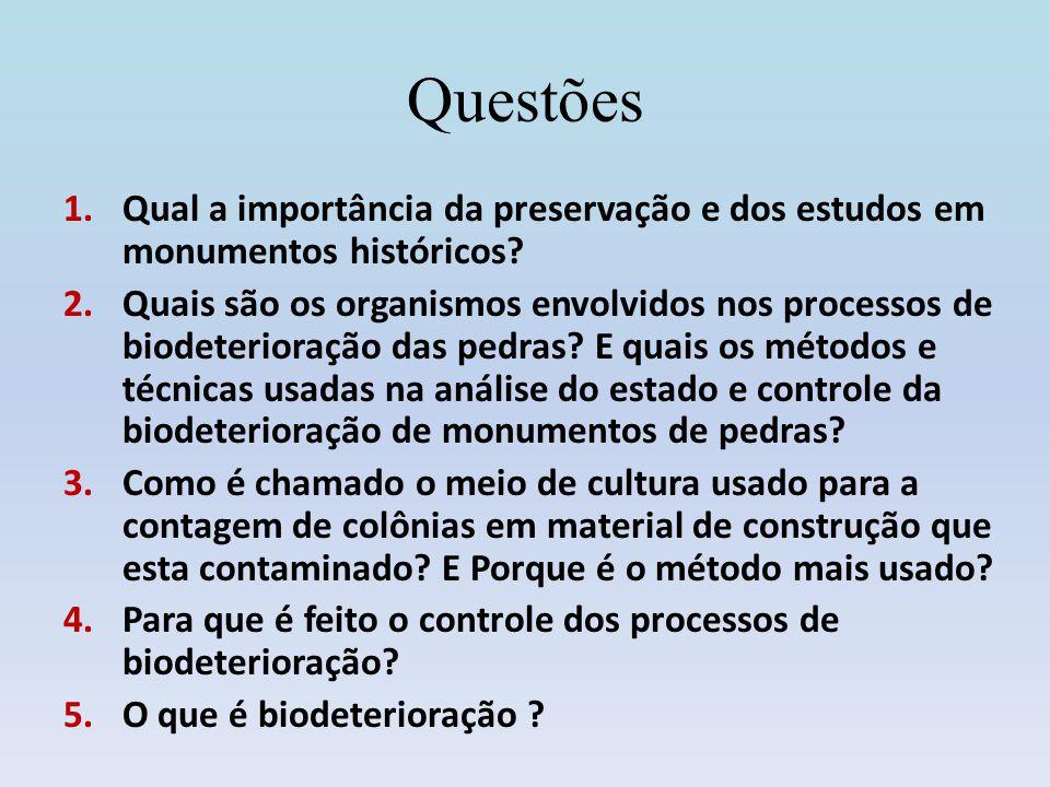 Questões Qual a importância da preservação e dos estudos em monumentos históricos
