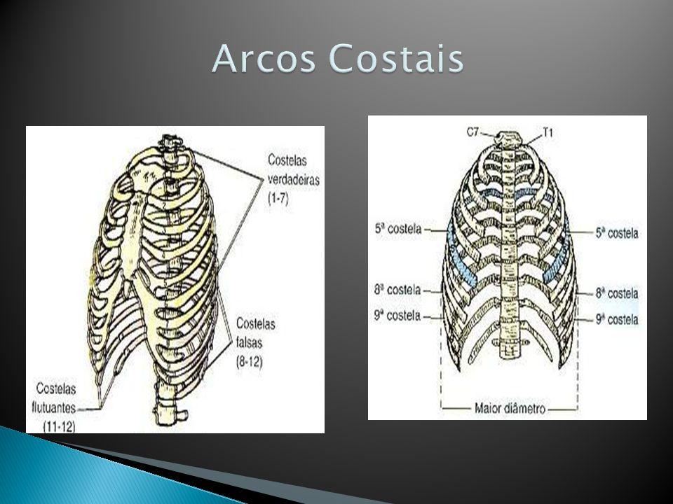 Arcos Costais