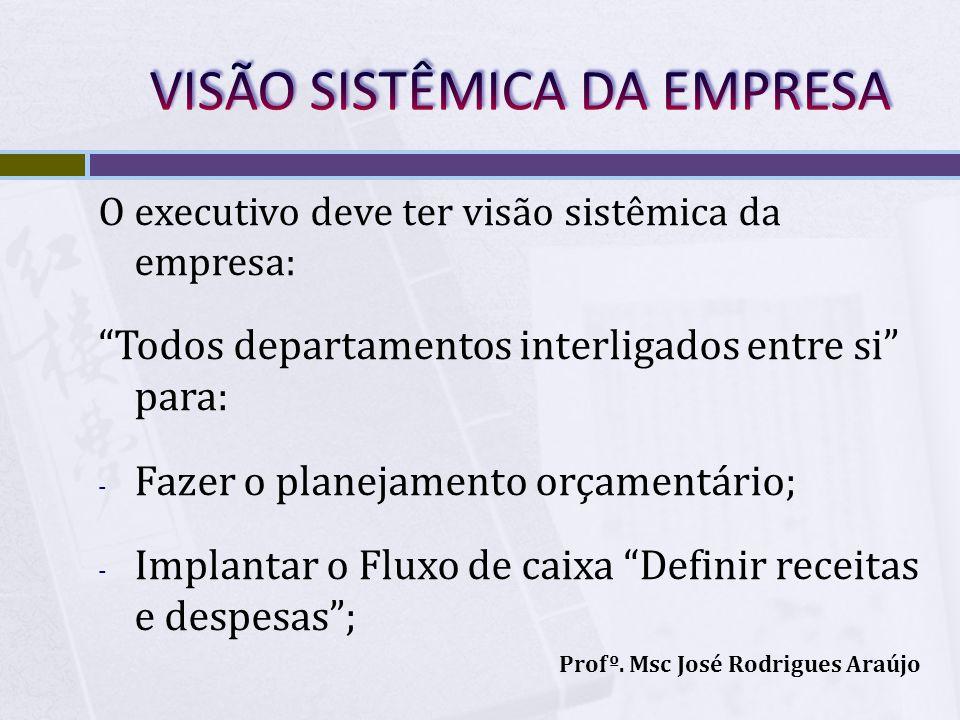 VISÃO SISTÊMICA DA EMPRESA