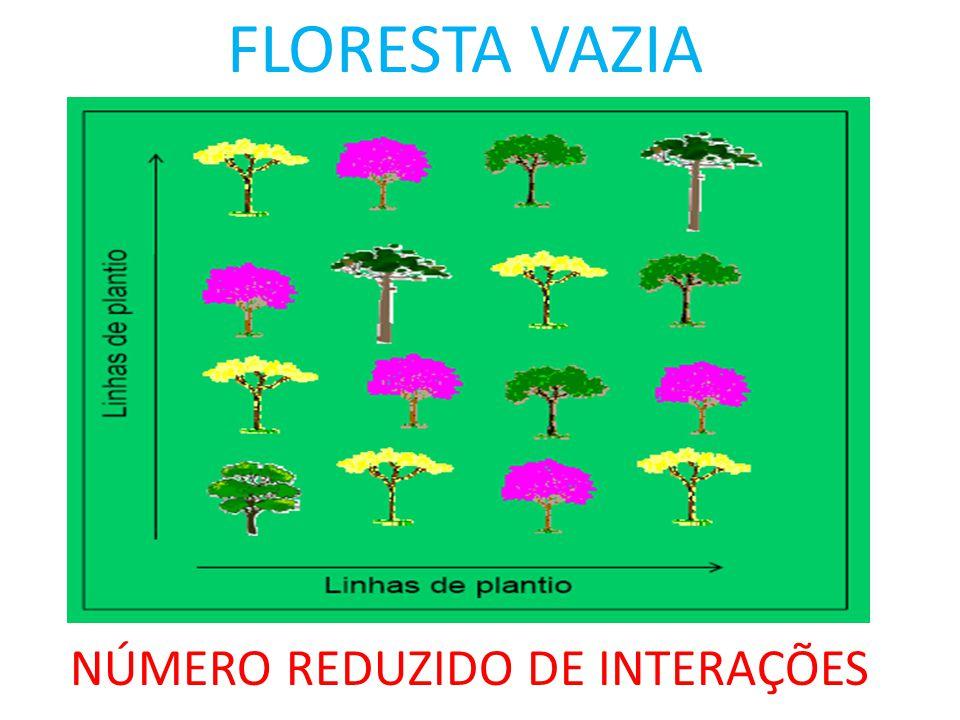 FLORESTA VAZIA NÚMERO REDUZIDO DE INTERAÇÕES
