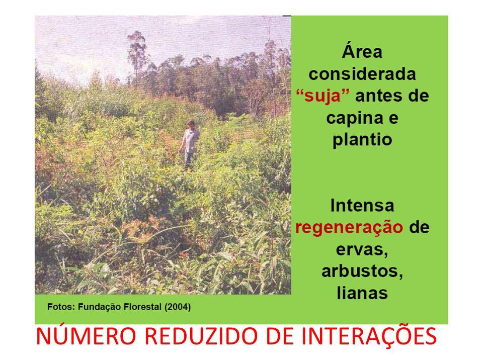 NÚMERO REDUZIDO DE INTERAÇÕES