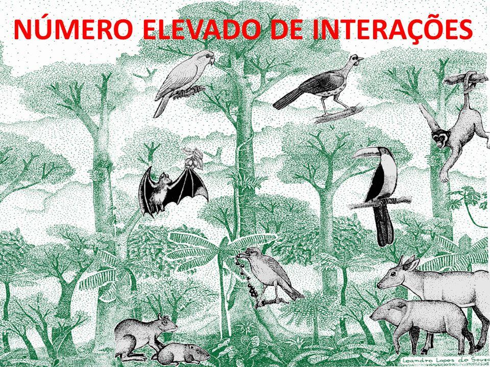 NÚMERO ELEVADO DE INTERAÇÕES