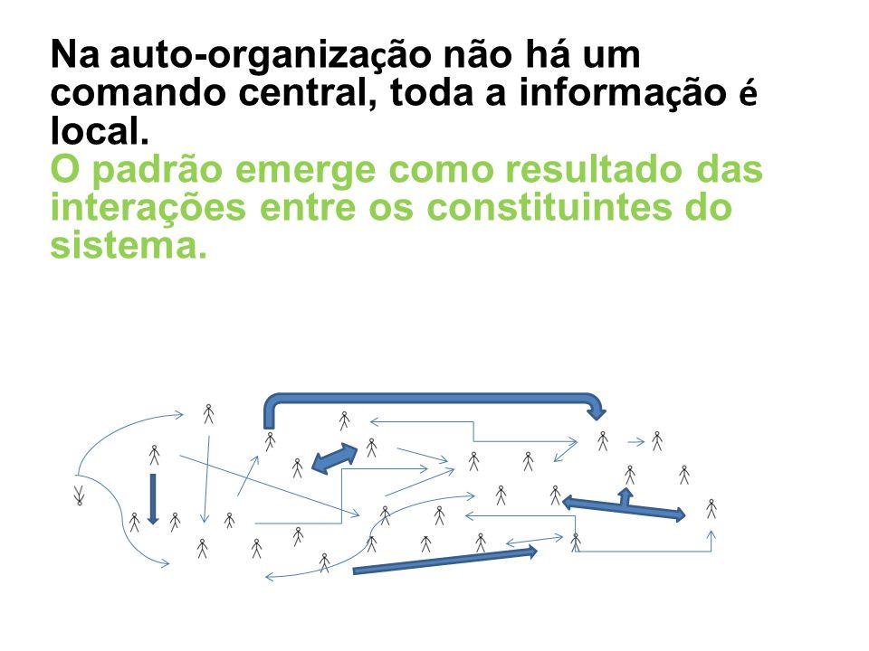 Na auto-organização não há um comando central, toda a informação é local.
