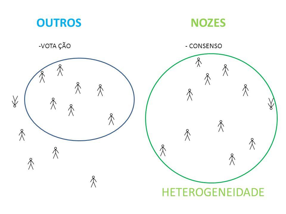 OUTROS NOZES HETEROGENEIDADE -VOTA ÇÃO - CONSENSO