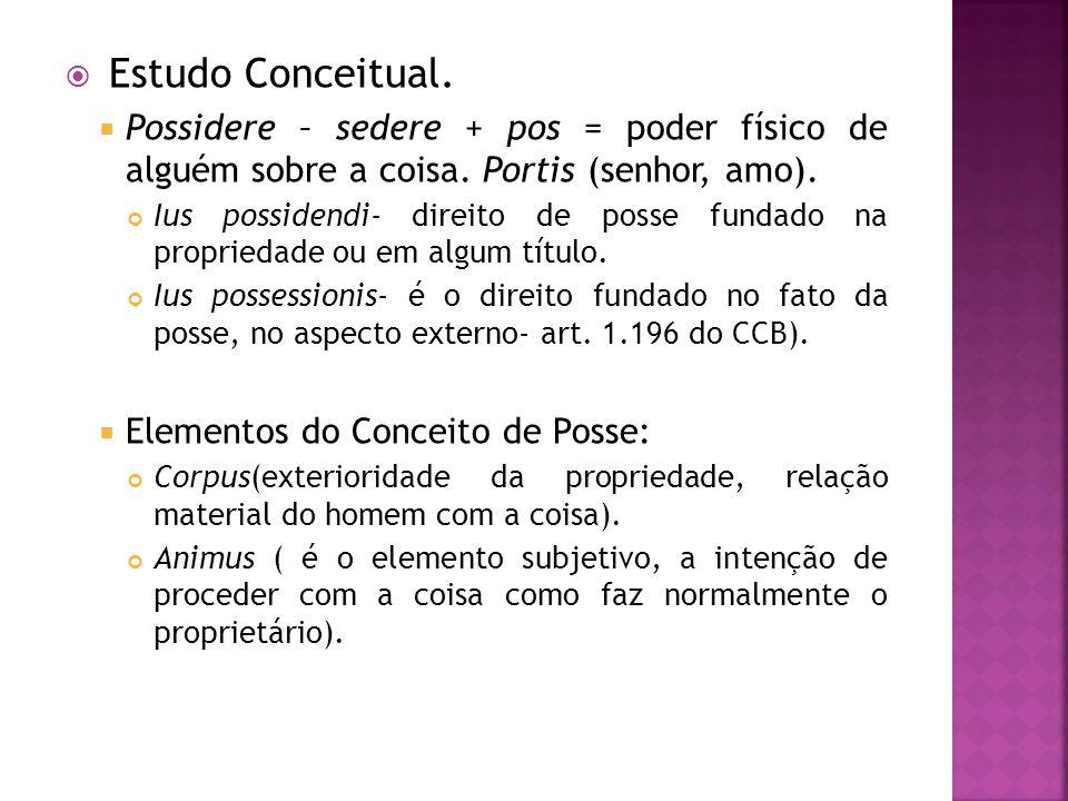 Estudo Conceitual. Possidere – sedere + pos = poder físico de alguém sobre a coisa. Portis (senhor, amo).