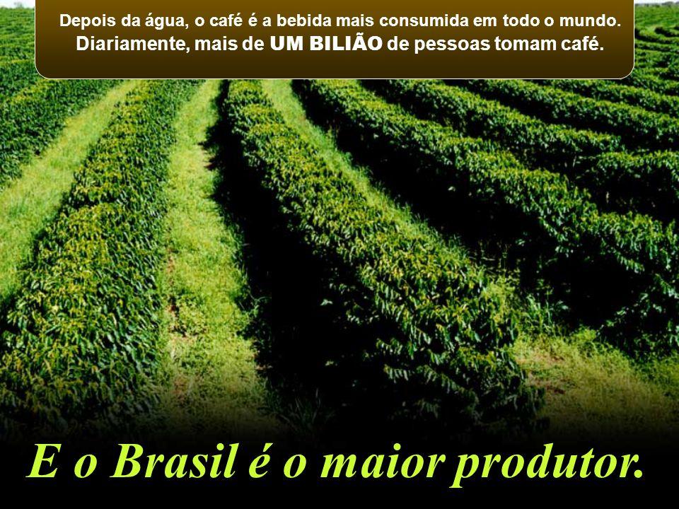 E o Brasil é o maior produtor.