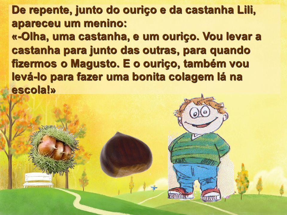 De repente, junto do ouriço e da castanha Lili, apareceu um menino: «-Olha, uma castanha, e um ouriço.