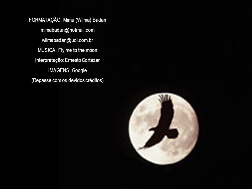 FORMATAÇÃO: Mima (Wilma) Badan mimabadan@hotmail.com