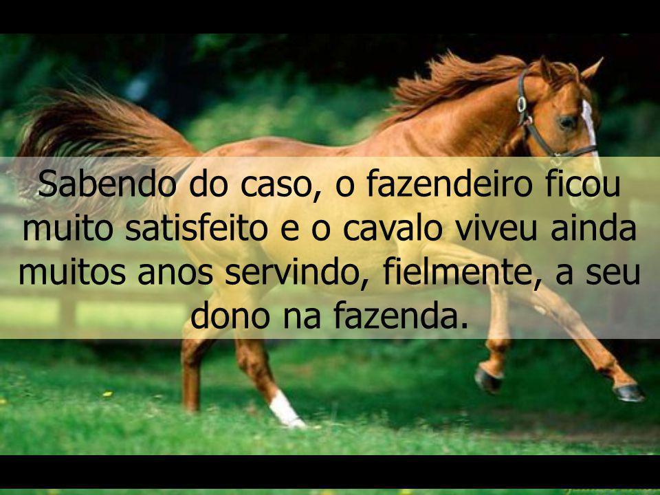 Sabendo do caso, o fazendeiro ficou muito satisfeito e o cavalo viveu ainda muitos anos servindo, fielmente, a seu dono na fazenda.
