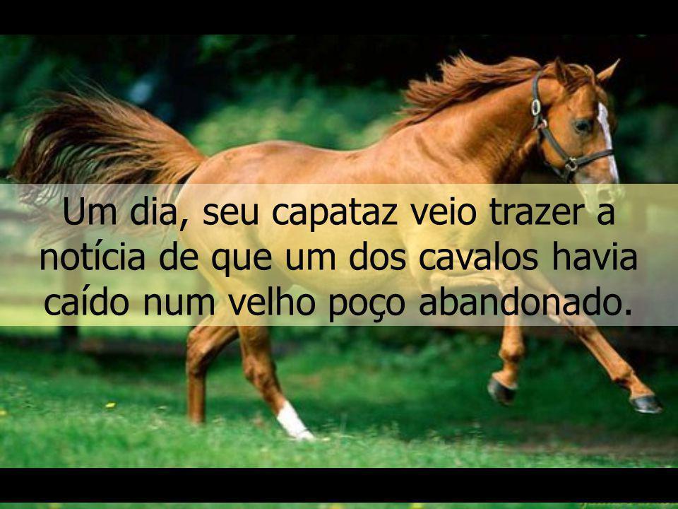 Um dia, seu capataz veio trazer a notícia de que um dos cavalos havia caído num velho poço abandonado.